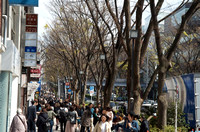 Harajuku neighbourhood -- a few people walking down Omotesando Street