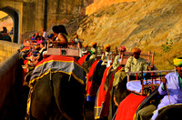Elephant Ride at Amber Fort, Jaipur